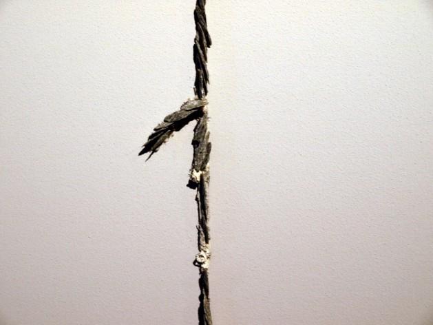 berend-bodenkamp-12